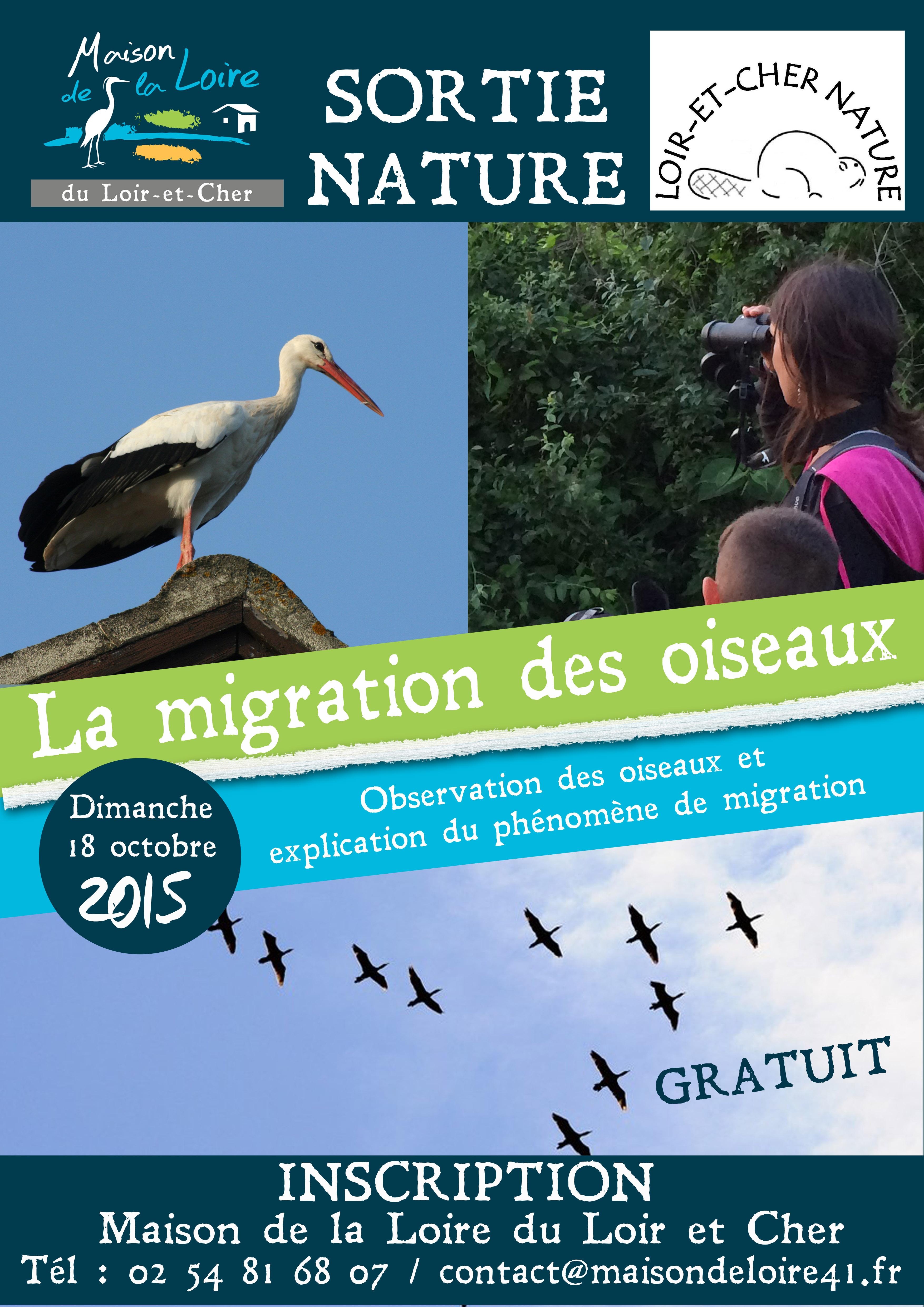 affiche migration