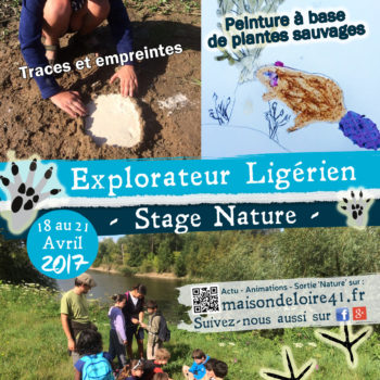 18 au 21 avril :  stage nature !