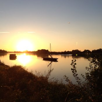 Concours photos 2019 : Un été en bord de Loire