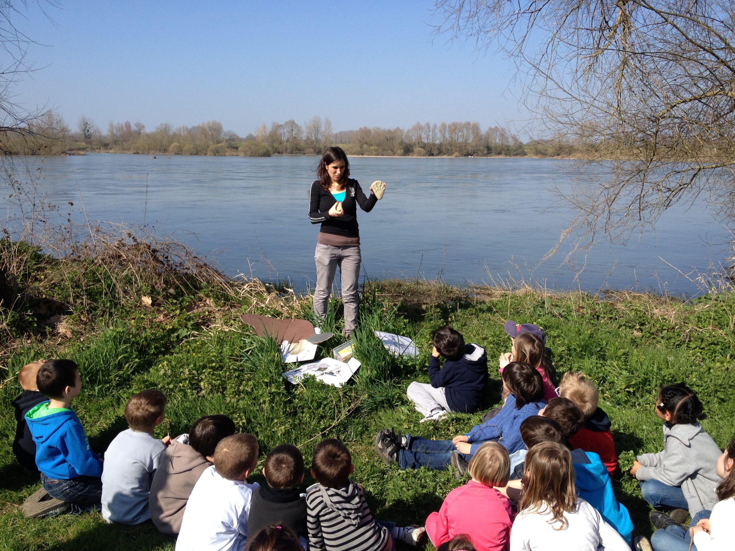 Animation 'nature' avec La Maison de la Loire du Loir-et-Cher