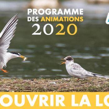 Agenda 2020 : toutes nos sorties !