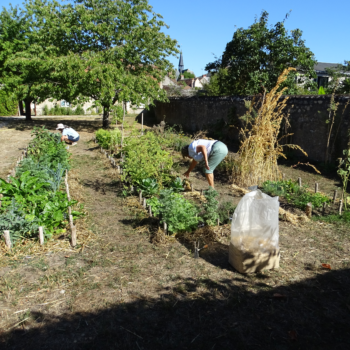 Samedi 19 juin : Journée portes ouvertes des jardins partagés !